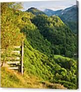 Borrowdale Valley - Lake District Canvas Print
