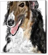 Borzoi Handsome Canvas Print