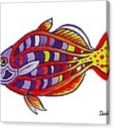 Boseman's Rainbowfish Canvas Print