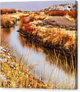 Bosque Canal Canvas Print