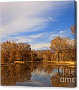 Bosque Del Apache Reflections Canvas Print