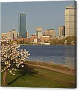 Boston Charles River On A Spring Day Canvas Print