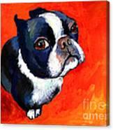 Boston Terrier Dog Painting Prints Canvas Print