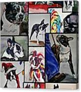Boston Terrier Watercolor Collage Canvas Print