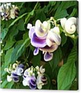 Botanic Garden Flower Canvas Print
