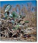 Bottle Bush Canvas Print