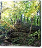 Bottom Of Devil's Punchbowl Wildcat Den Canvas Print