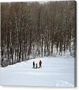 Bottom Of The Sled Hill Canvas Print