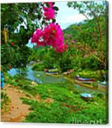 Bouganvilla Watches Over Village Fishing Boats Canvas Print