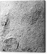 Boulder Detail Canvas Print