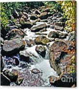 Boulder Stream Canvas Print