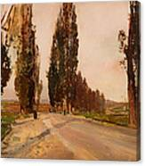 Boulevard Of Poplars Near Plankenberg Canvas Print