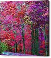 Bountiful Color Canvas Print