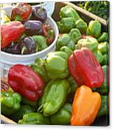 Bountiful Peppers Canvas Print
