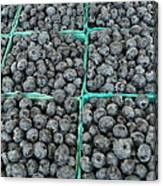 Bounty Of Blueberries Canvas Print
