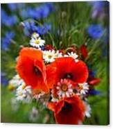 Bouquet Of Fresh Poppies Camomiles And Cornflowers Canvas Print