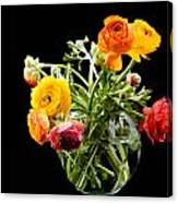 Bouquet Of Ranunculus Canvas Print