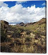 Bowen Homestead Ruins Canvas Print