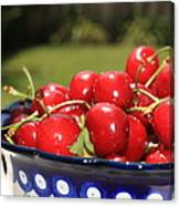 Bowl Of Cherries In The Garden Canvas Print