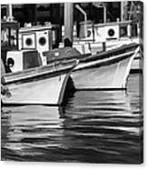 Bows Out Black And White Canvas Print
