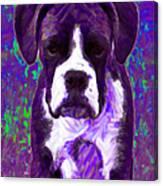 Boxer 20130126v6 Canvas Print