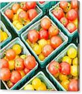 Boxes Of Cherry Tomatoes On Display Canvas Print