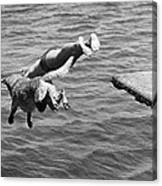 Boy And His Dog Dive Together Canvas Print