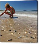 Boy Picking Seashells On The East Coast Canvas Print