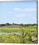 Boylan Marsh Canvas Print