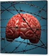 Brain And Barbed Wire Canvas Print