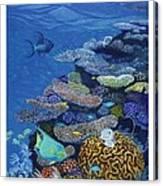Brain Coral Canvas Print