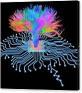 Brain Shaped Circuit Board With Fibres Canvas Print