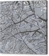 Branched Snow Canvas Print
