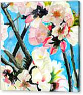 Branches Of Almond Tree Canvas Print