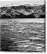 brash sea ice forming in front of glacier wall face port lockroy Antarctica Canvas Print