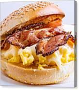 Breakfast Sandwich Canvas Print