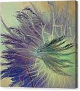 Breath In Wings  Canvas Print