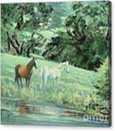 Breathing In Strength Unsaddled Canvas Print
