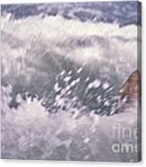 Brian Swimming In The Sea Canvas Print