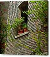 Brick With Greenery Canvas Print