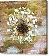 Bricks Beneath Her Feet Canvas Print