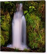 Bridal Dress. Waterfall At Benmore Botanical Garden. Nature Of Scotland Canvas Print