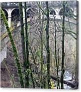Bridge Arch Through The Trees Canvas Print