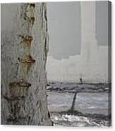 Bridge Column Decay 3 Canvas Print