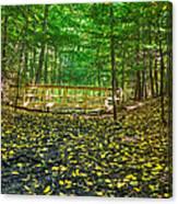 Bridge In Gosnell Big Woods Canvas Print