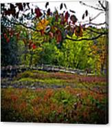 Bridge In Massachusetts Park Canvas Print