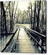 Bridge In The Wood Canvas Print