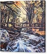 Morning Bridge In Woods Canvas Print