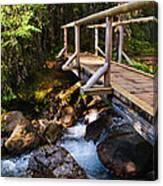 Bridge Over A Mountain Stream Canvas Print