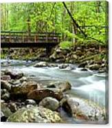 Bridge Over Little Pigeon River Canvas Print